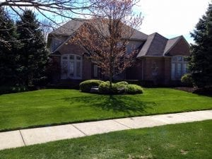 lawn and landscape install in Bloomfield