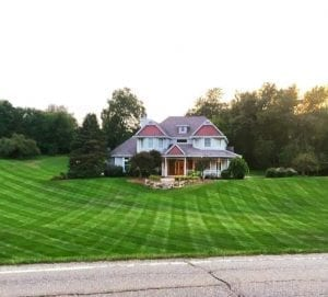 Michigan lawn stripes