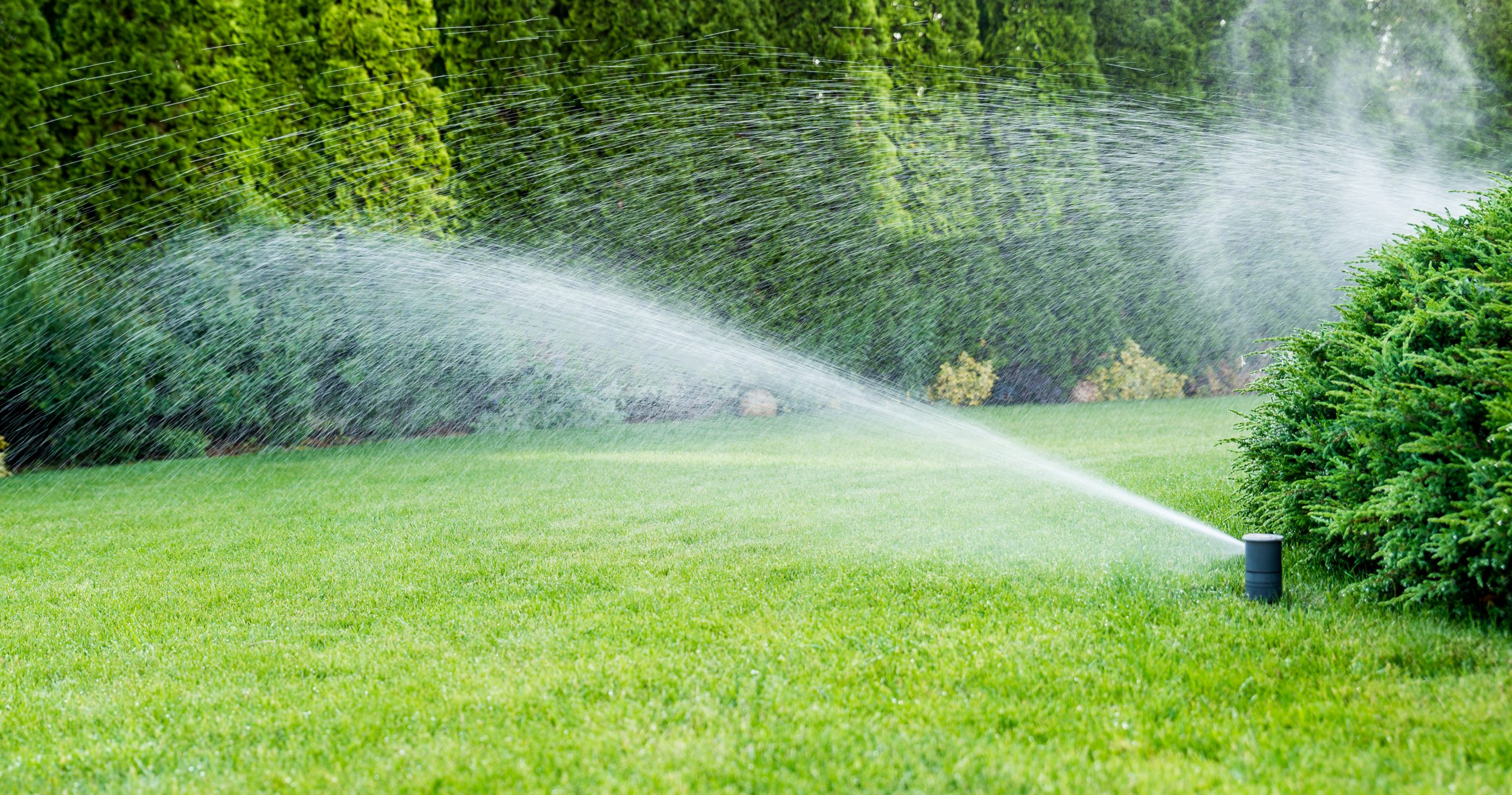 How & Why You Should Winterize Your Sprinkler System