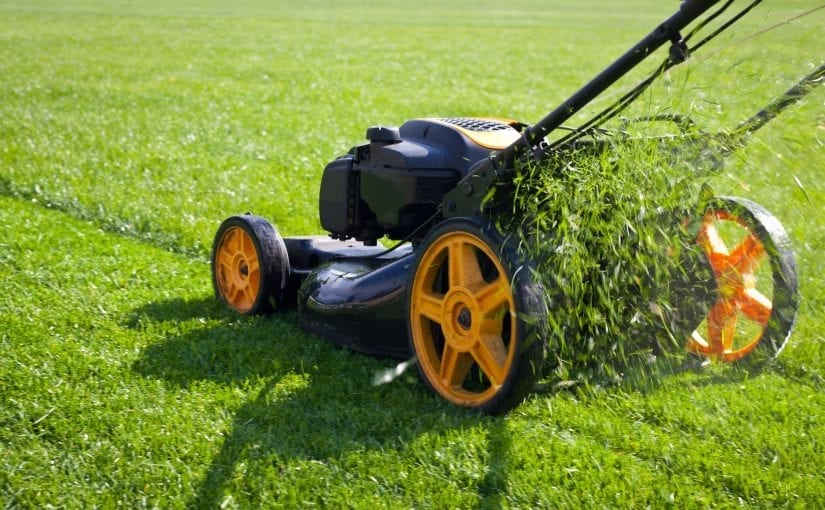 Best Ways To Get Lawn Care Customers