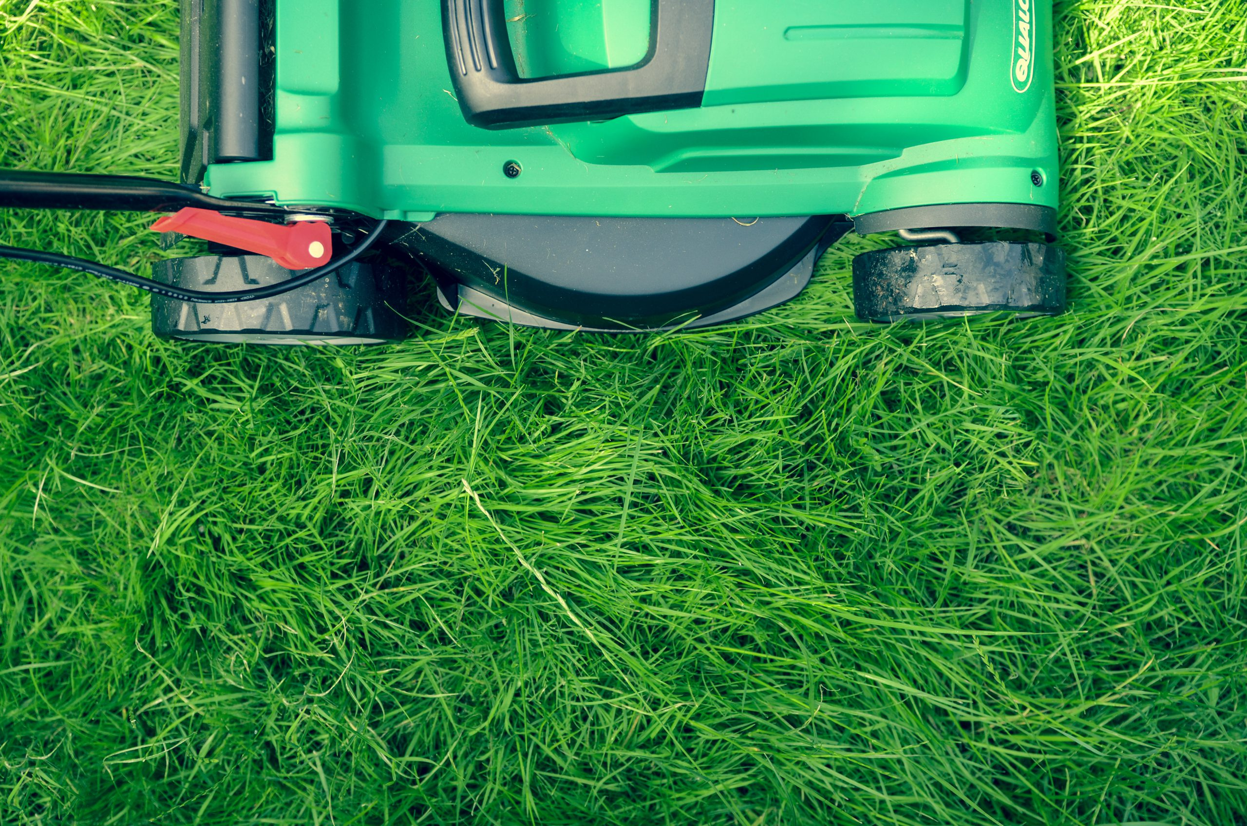 Double Cutting Your Lawn: Is It Worth It?