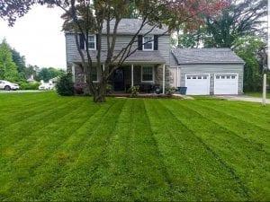 lawn mowing in Philadelphia