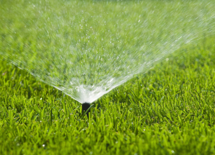 Lawn Sprinkler Watering Lawn in Heat