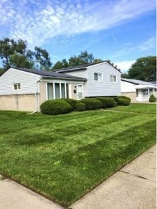 Rochester Lawn Care